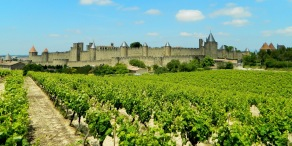 Magical Carcassonne