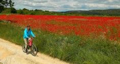 Cycling in the Cevenne foothills