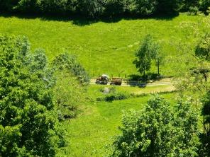 Farming on the pilgrim route in Haute-Garonne