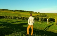 Admiring the German vines