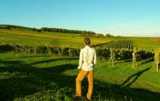 Admiring the German vines