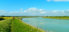 River Arun walks