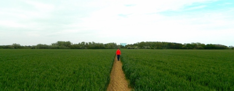 Walking to Littlehampton