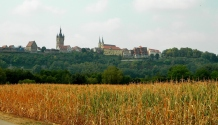 Bad Wimpfen from the road below