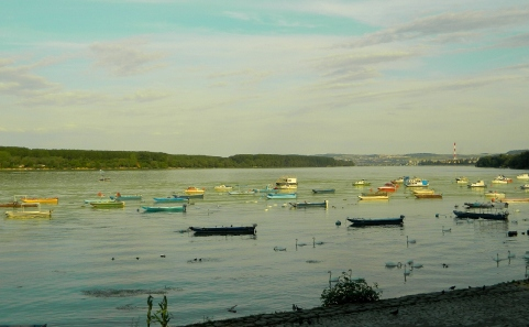 Looking back to Belgrade from Zemun
