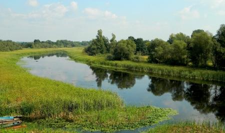 Zasavica bar waterway