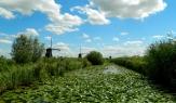 A lunch spot at Kinderdijk