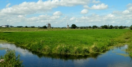 Kinderdijk view