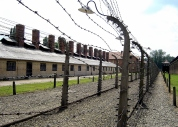 Electrified barbed-wire fencing at Auschwitz