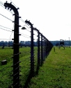 Electrified barbed-wire fencing at Birkenau