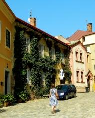 Local's street