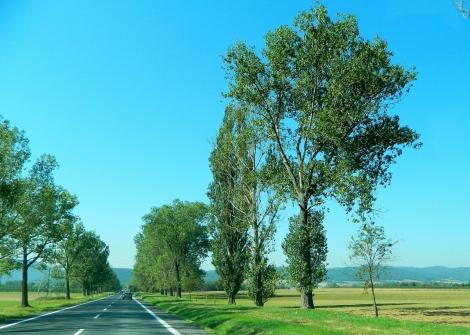 A morning drive into Silesia