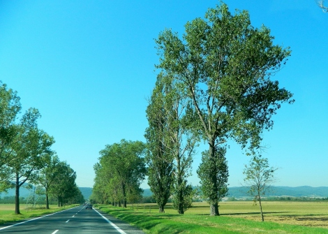 A morning drive into Silesia