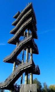 Silver Fir Tower at Kehl