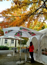 The Kurpark autumnal bar