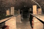 Olivia's wine cellar