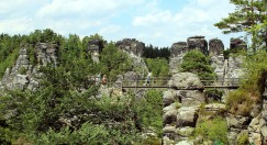 Skywalk above ravine