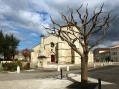 Coulon church and tree