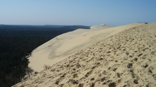 The mighty Dune du Pilat high above the forest