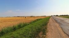 Bumper crops & bumpy roads