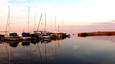 Local boats at moorings