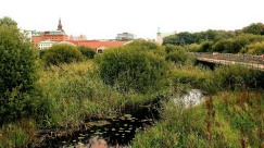 Wetlands at Kristianstad