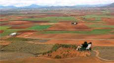 La Mancha olive groves and vineyards