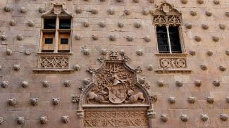 Scallop shells of Santiago de Compostela